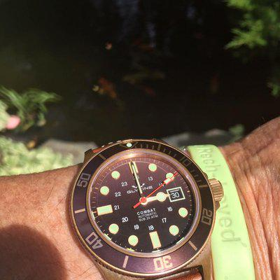 Bronze Glycine Combat Sub for sale SOLD